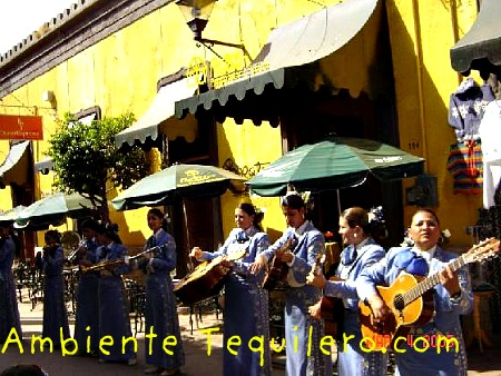 tlaquepaque dating site Mountain bluebirds, bright jewels in sedona the bluebird has been referenced as a powerful symbol of happiness in many cultures dating tlaquepaque is known.
